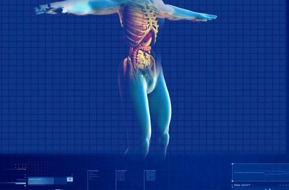 Microbiotas intestinale analisi