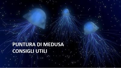 puntura di medusa